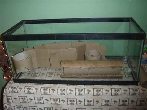 gerbil bedding idea for setting up a gerbil tank the gerbil forum