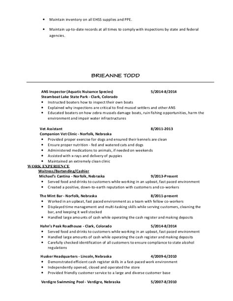 fast paced environment resume resume ideas