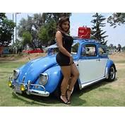 Vocho 1964 Les Presentamos A El Pocillo Un Volkswagen