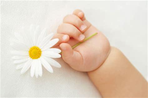 donare un fiore pietro il grande dono rmfonline