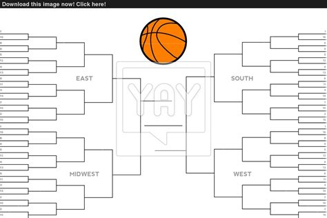 college basketball blank tournament bracket vector