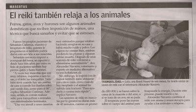 lade al mercurio medicina hol 237 stica veterinaria