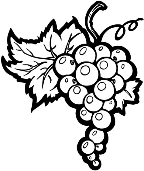 0161 vegetables and melons signspecialist beevault decals bunch of grapes