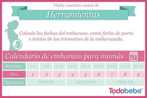 Calendario Para Bebes Calendario Embarazo