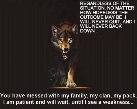 creatures of will and temper books 77 best images about wolf quotes on