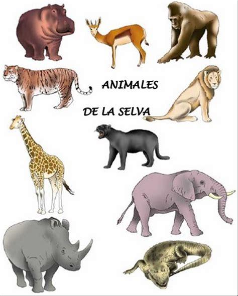 imagenes de animales la selva im 225 genes de verduras frutas y animales lengua de signos