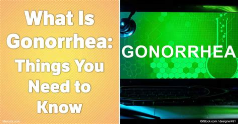 what is olaplex everything you need to know about the what is gonorrhea things you need to know