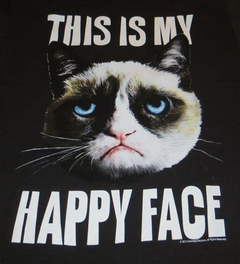 Grumpy Face Meme - happy faces grumpy cat and memes on pinterest