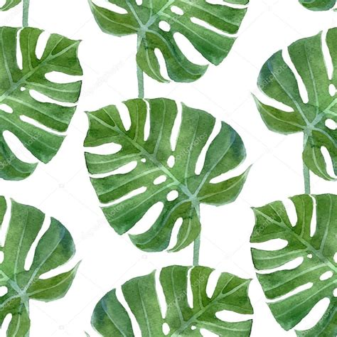 watercolor leaf pattern patrones sin fisuras de la hoja de monstera acuarela