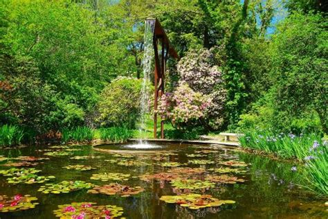 the flume and pool heritage gardens cape cod ma picture of heritage museums gardens