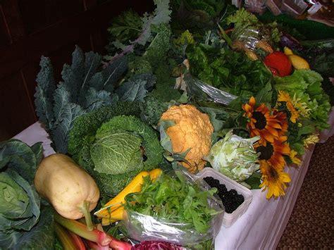 best compost for vegetable garden compost gardening tips compostscoop