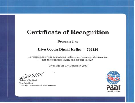 Examples Of A Customer Service Resume by Dive Ocean Diving Centers