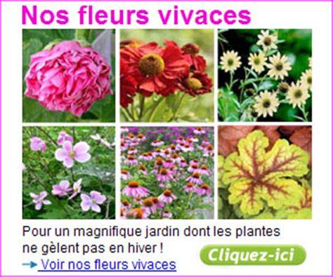 Modele De Parterre Exterieur 3907 les jardiniers 233 changent leurs plantes
