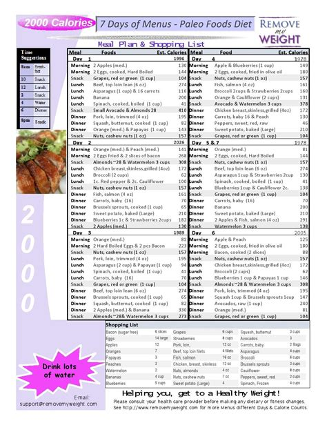 printable meal planner with calorie counter free 2000 calories a day 7 day paleo diet with shopping