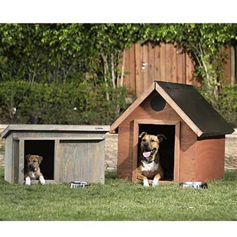 do it yourself dog houses ware at petworldshop com