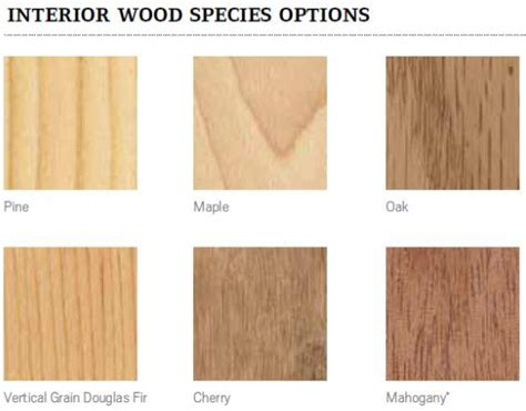 Interior Species new interior wood options for andersen a series windows