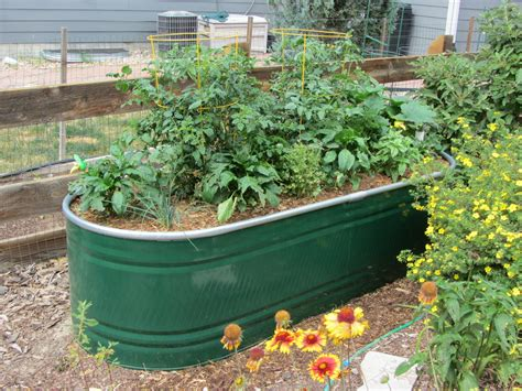 Water Trough Planters by A Self Watering Trough Planter Valorie S Garden