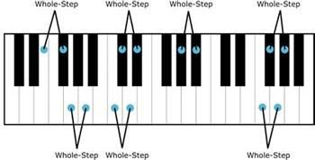 Half Step Semitones Half Steps And Whole Tones Whole Steps