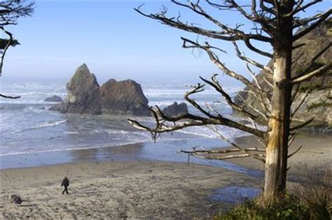 arcadia beach trailhead hiking in portland oregon and
