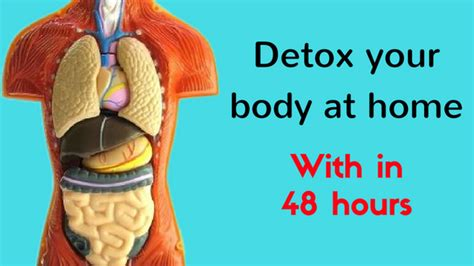 How To Detox At Home by How To Do Detoxification Of At Home 48 Hours