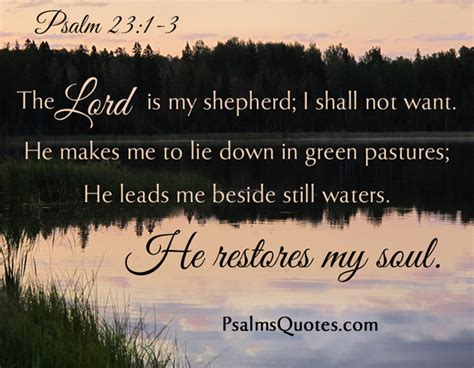 psalms of healing and comfort psalm 23 1 3 bible verse book of psalms
