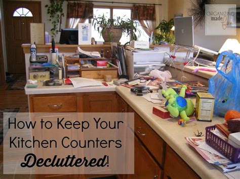 how to organize your kitchen counter best 25 organizing kitchen counters ideas on pinterest