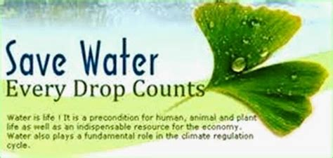 Every Drop Counts Essay by Essay On Save Tiger Save Earth