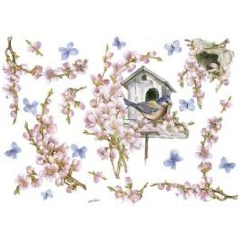 disegni di fiori di pesco fiori di pesco