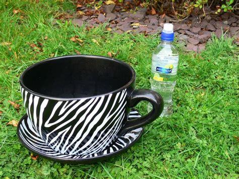 Buy A Planter giant tea cup amp saucer planter plant pot zebra stripes
