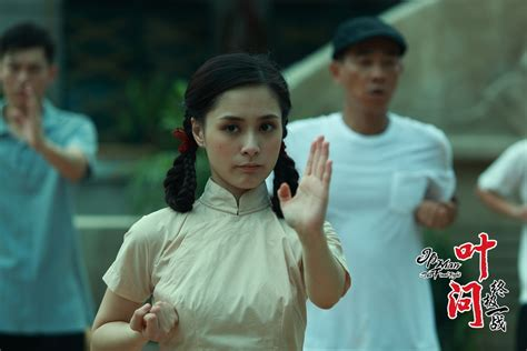 film ip man the final fight movie review ip man the final fight 叶问 终极一战