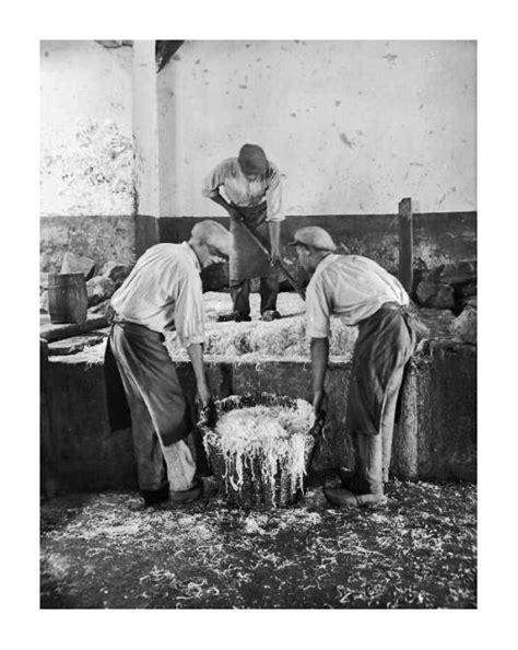 cuisiner la choucroute cuisiner de la choucroute crue