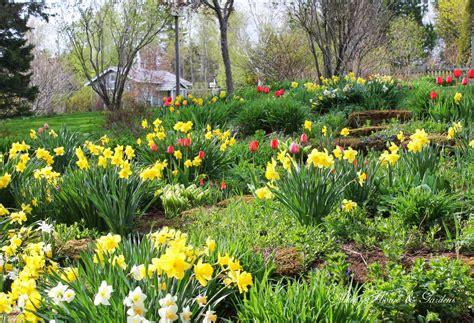 spring gardens aiken house gardens the winners and our spring garden