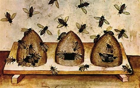Bee Keeping By The Times Bee Keeper Beekeeping