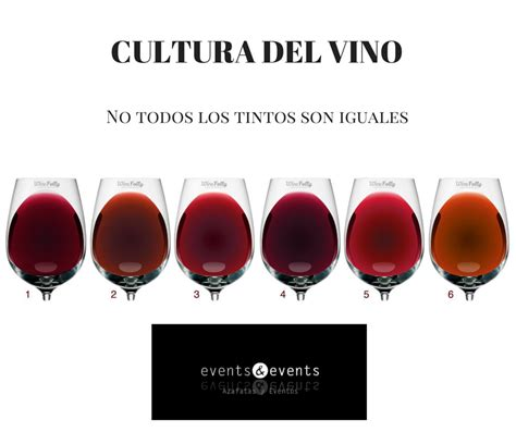 color tinto el vino tinto y sus colores vinos vino