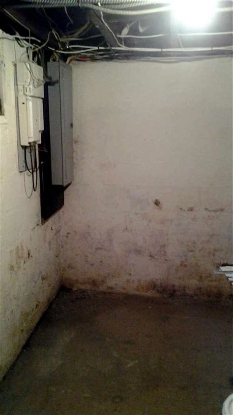 moldy smell in basement quality 1st basement systems basement waterproofing
