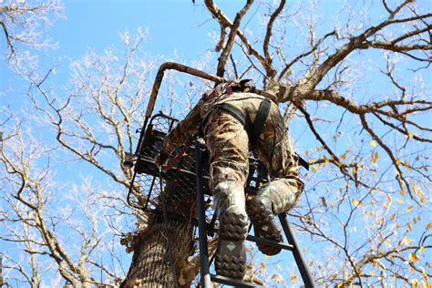 tree safety tree stand safety guide safety harnesses and