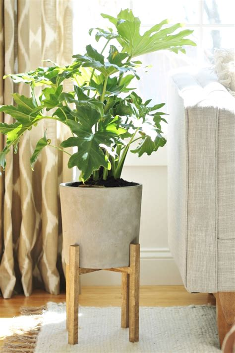 West Elm Planters by West Elm Knock Mid Century Planter How I Saved 100