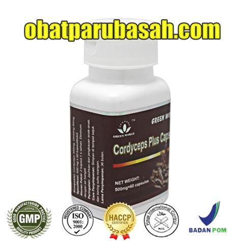 Obat Herbal Paru Paru Keringcordyceps Plus Capsule obat herbal radang paru paru efektif
