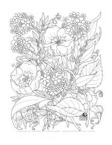 free printable flower coloring pages for adults coloring a tangle of flowers set of 8 by emerlyearts