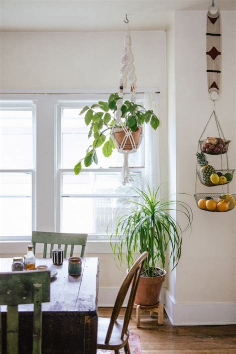 Plants In Dining Room by An Jungle In Oregon Usa Decorenvy
