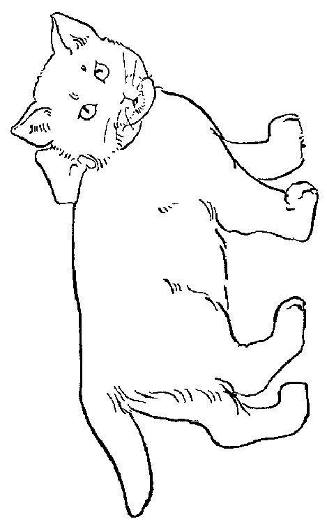coloring pages of coon dogs kot kolorowanki 12 fd