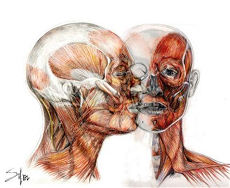 imagenes artisticas cuerpo humano dibujo y creaci 243 n dibujo de la figura humana