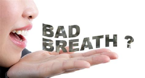 breath smells bad 16 best remedies for bad breath foul smell best health tips