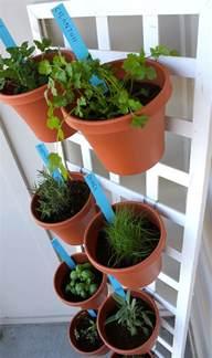 Herbs For Vertical Garden Vertical Herb Garden Design Using A Lattice Fence Herb