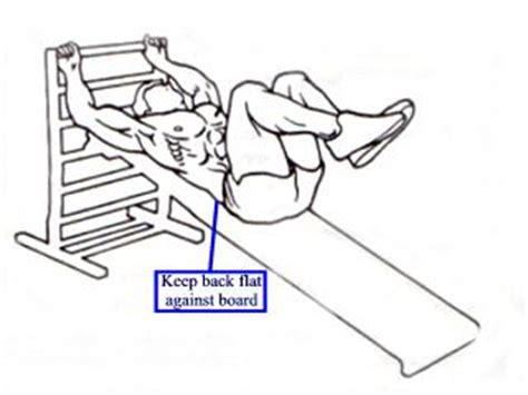 incline bench reverse crunches exercises for the abdominal muscles abs