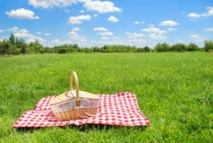 The Picnic How Portable Is Your Ministry The Picnic As A New