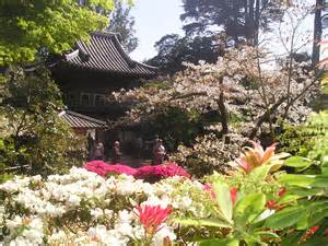 Garden Sf by San Francisco Photo Gallery Japanese Tea Garden Tony
