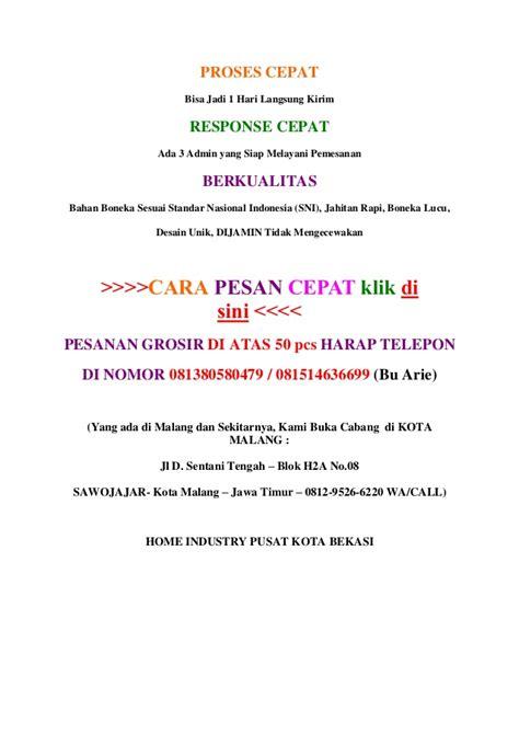 Boneka Wisuda Kota Surakarta Jawa Tengah 0812 9526 6220 boneka wisuda panda