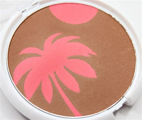 Everythings Bronzer In by N Color Icon Bronzer Blush Swatches And Review