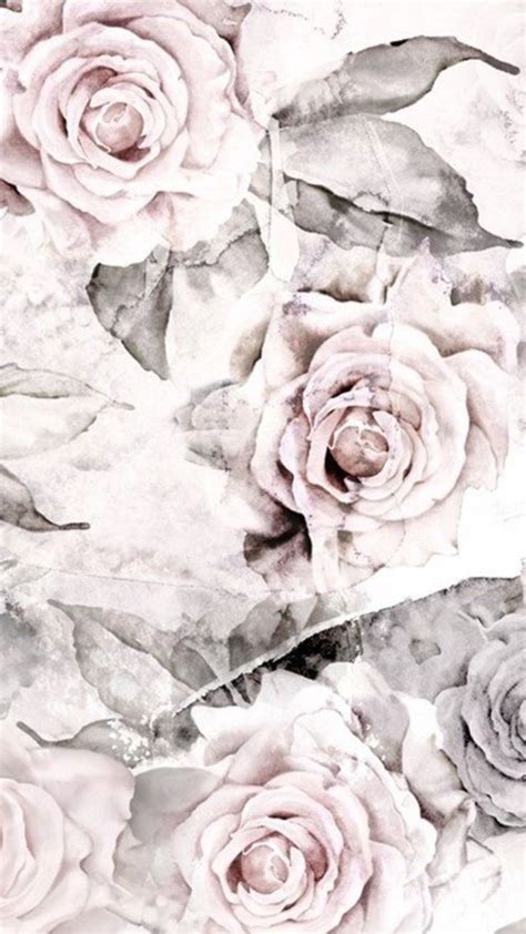 wallpaper grey roses 87 best wallpapers images on pinterest backgrounds